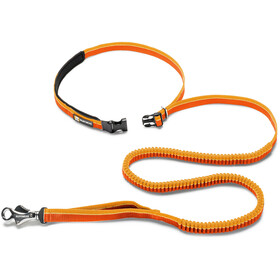 Ruffwear Roamer Article pour animaux, orange sunset